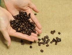 コーヒー豆の保管と鮮度