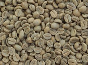 コーラルマウンテン コーヒー豆