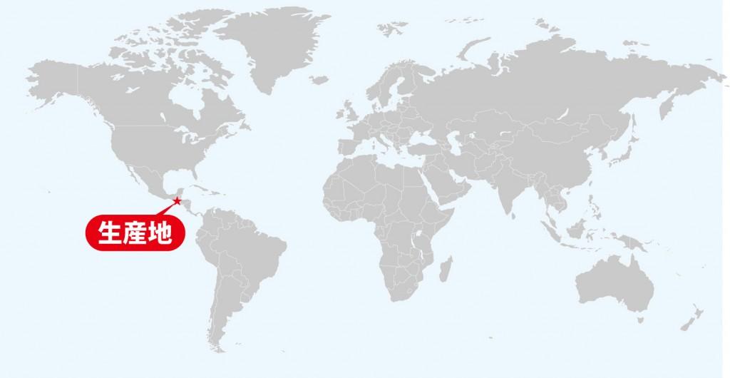 グアテマラ コーヒー 生産地